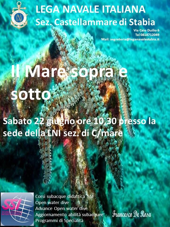http://www.leganavalestabia.it/immagini_articoli/miniature/11371200333.jpg